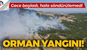 Denizli'de orman yangını, hala söndürülemedi