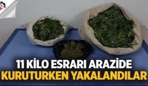Arazide 11 kilo esrarı kurutmaya çalışırken jandarmaya yakalandılar